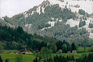 Unterleiten am Hagsteinweg in Kitzbühel