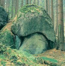"""Der """"Schwammerlstein"""" im nördlichen Waldviertel"""