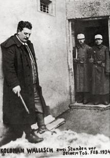 Der sozialdemokratischer Politiker Koloman Wallisch