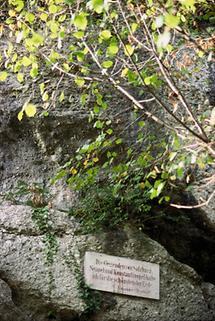 Steintafel mit Alexander von Humboldt-Zitat
