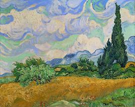 Weizenfeld mit Zypresse