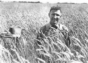 Farmer in Kornfeld