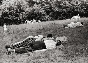 Sommerliche Entspannung im Wienerwald