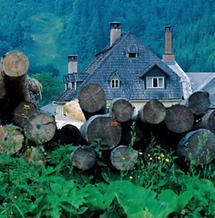 Schindelgedecktes Hammerherrenhaus