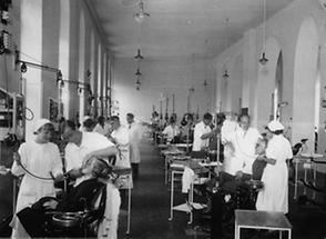 Zahnärztliches Institut