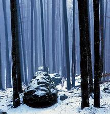 Erster Schnee in Buchberg bei St Ilgen