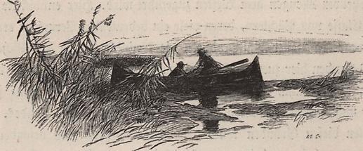 Fischerboot am Plattensee