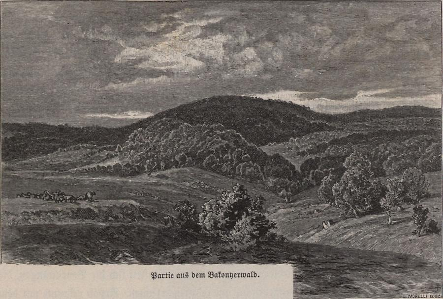 Illustration Bakonyerwald