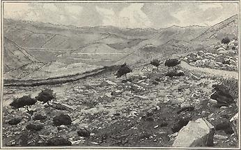 Popovopolje bei Zavala