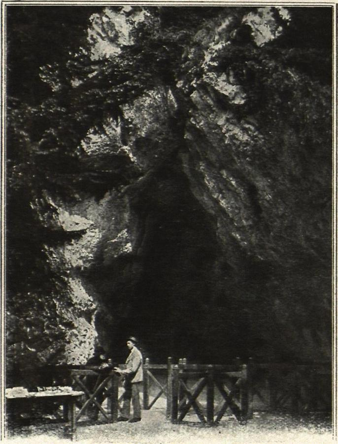 Illustration Eingang zur Adelsberger Grotte