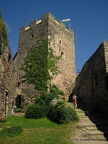 Burgruine 1