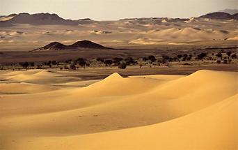 Algerien Dünenlandschaft