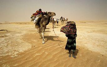 Libyen Tubu-Karawane in der Wüste