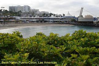 Las Americas, Hafen