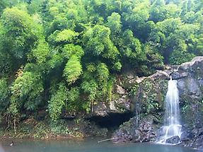 Wasserfall mit kleinem Wasserbecken