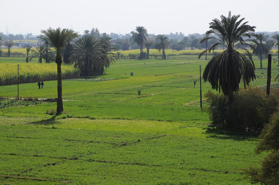 Nile Valley near Luxor