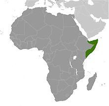 Somalia in Africa