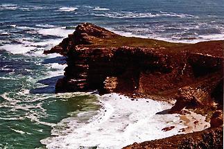 Cape of Good Hope, Shoreline