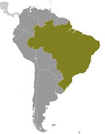 Brazil in South America