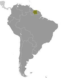 Suriname in South America