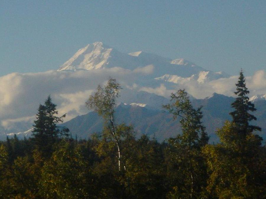 Photo: H. Maurer, 2005, Mount McKinley as seen from Denali Lodge