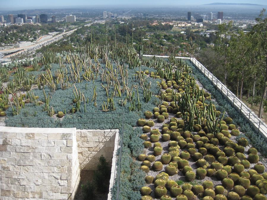LA Getty Center Cactus Garden & Blick auf LA
