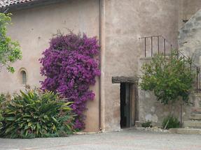 Carmel Mission San Carlos Borromeo del Rio Carmelo (4)