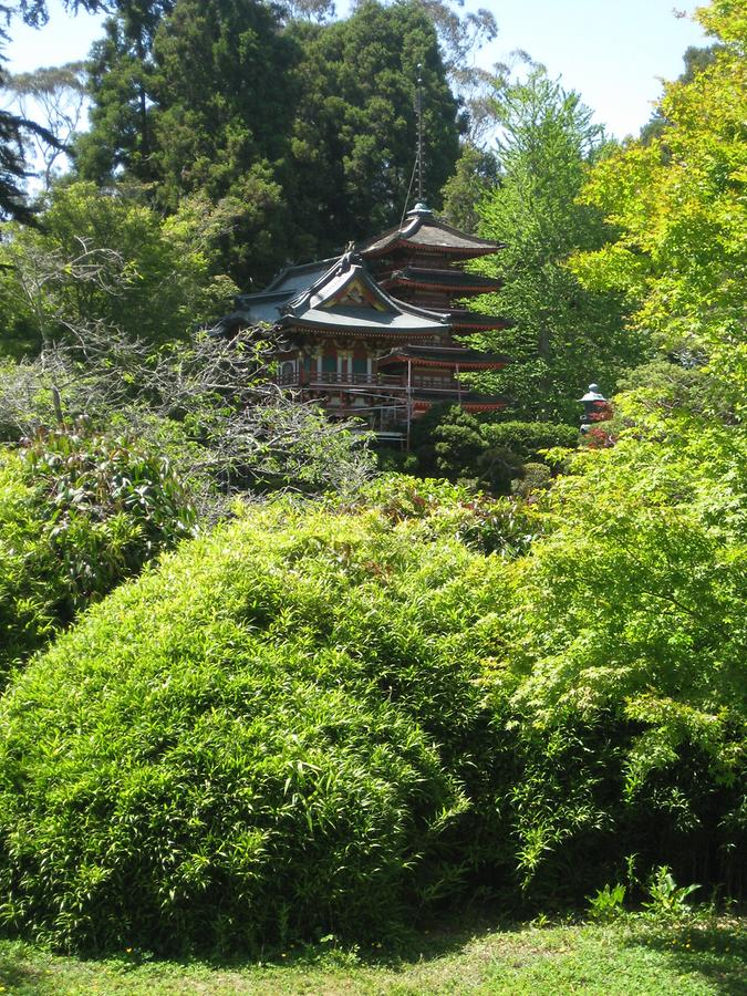San Francisco Golden Gate Park Japanese Tea Garden