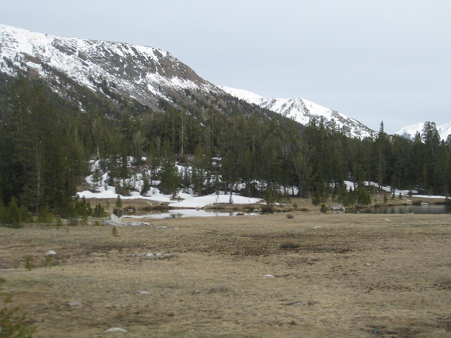 Yosemite National Park Tioga Pass 9,945 ft