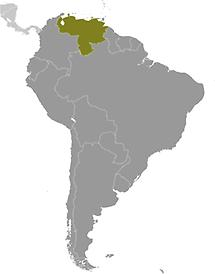Venezuela in South America
