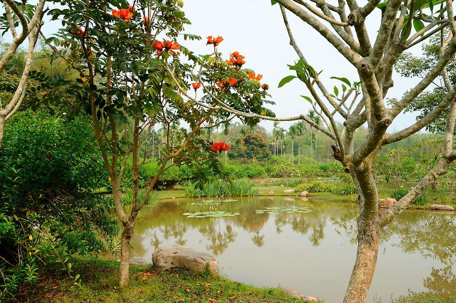 Asia Garten ist perfekt stil für ihr haus ideen