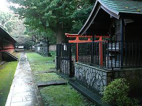Ueno Toshogu Shrine (4)