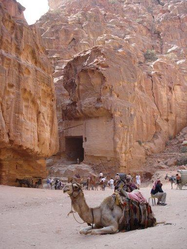Rest stop at Petra