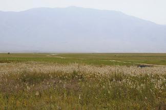 Landschaft bei Almaty (2)