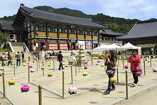 Haein Temple (1)