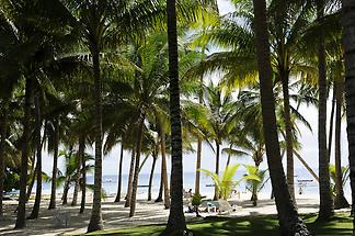 Alona Beach Panglao (1)