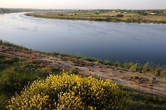 Euphrates (1)