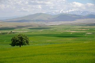 Landscape near Hacibektas (2)
