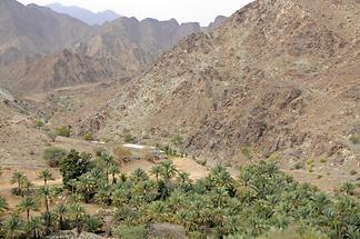 Wadi Hayl Fujairah (1)