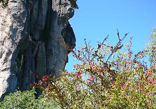 Mareeba to Chillagoe (5)