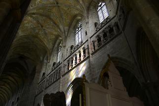 Trèguier - St Tugdual (3)