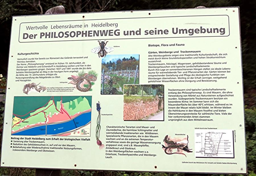 Heidelberg - Philosophers' Walk