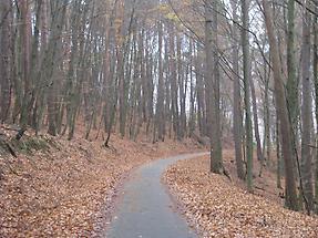 Höchst im Odenwald - Kloster Höchst - Meditationsweg (4)