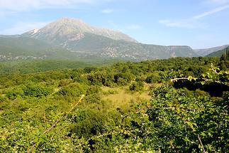 Landscape near Arta