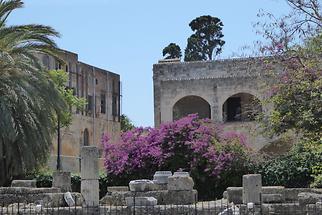 Rhodes (5)