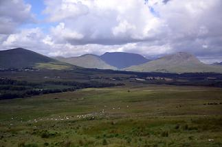Ring of Kerry (1)