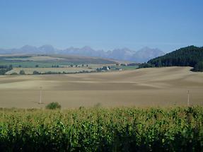 The Slovakian countryside