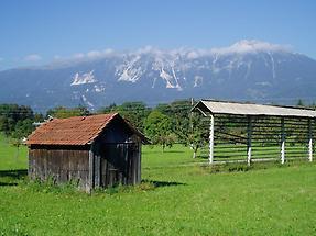 A farm field, Slovenia