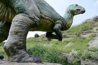 Dinosaur Valdecevillo (1)