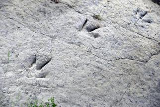 Saurian Tracks Valdecevillo (2)